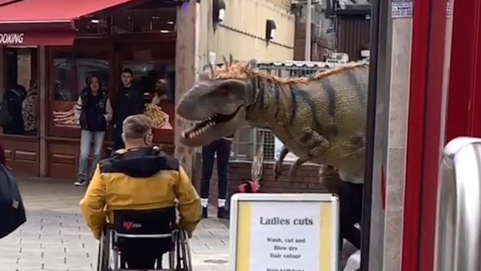Dino-Prank wird zum viralen Hit