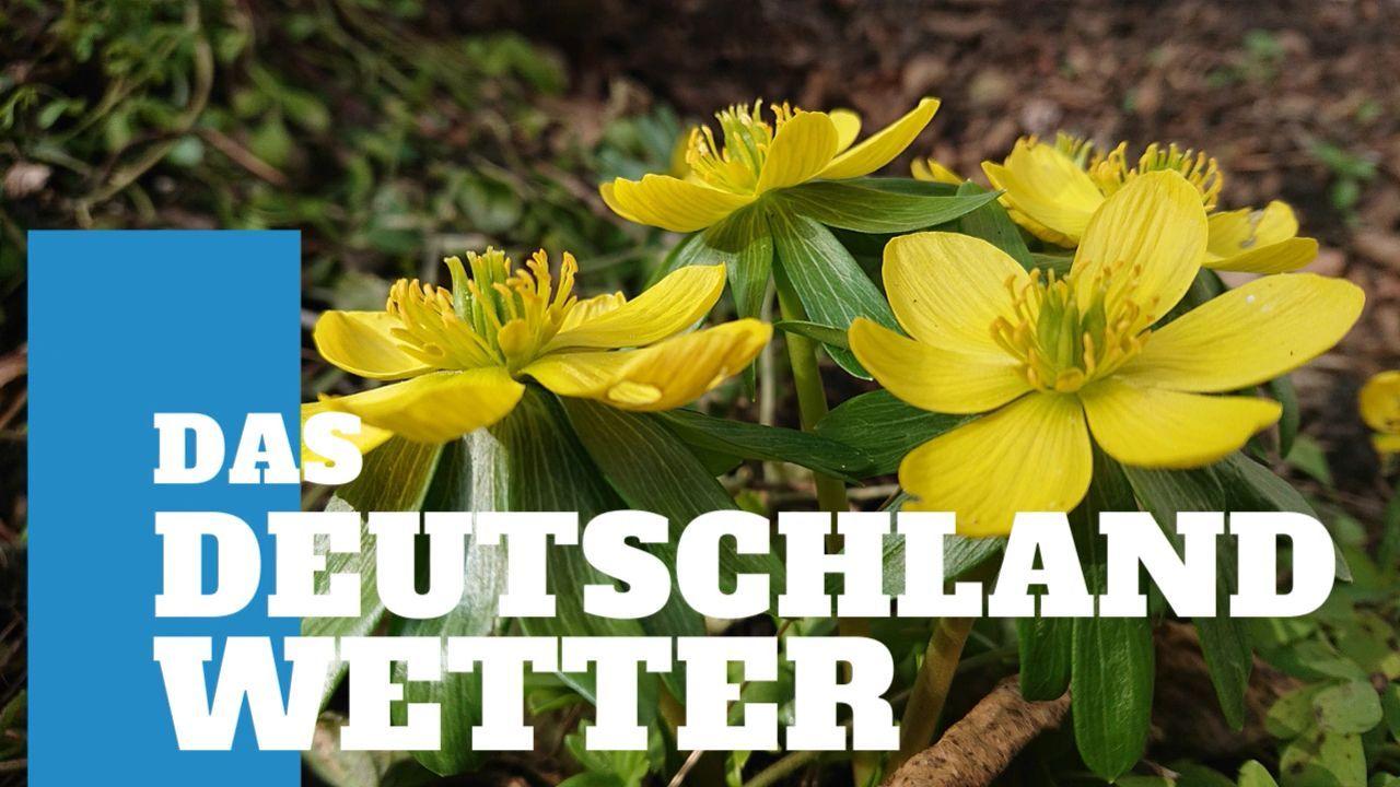 Deutschland-Wetter: 5-Tage-Trend – Frühlingshafte Tage