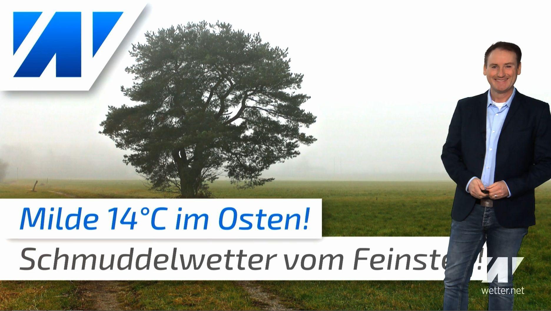 14°C im November: Schmuddelwetter vom Feinsten!